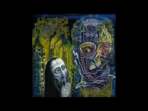 Hammers of Misfortune - Dead Revolution [Full Album]
