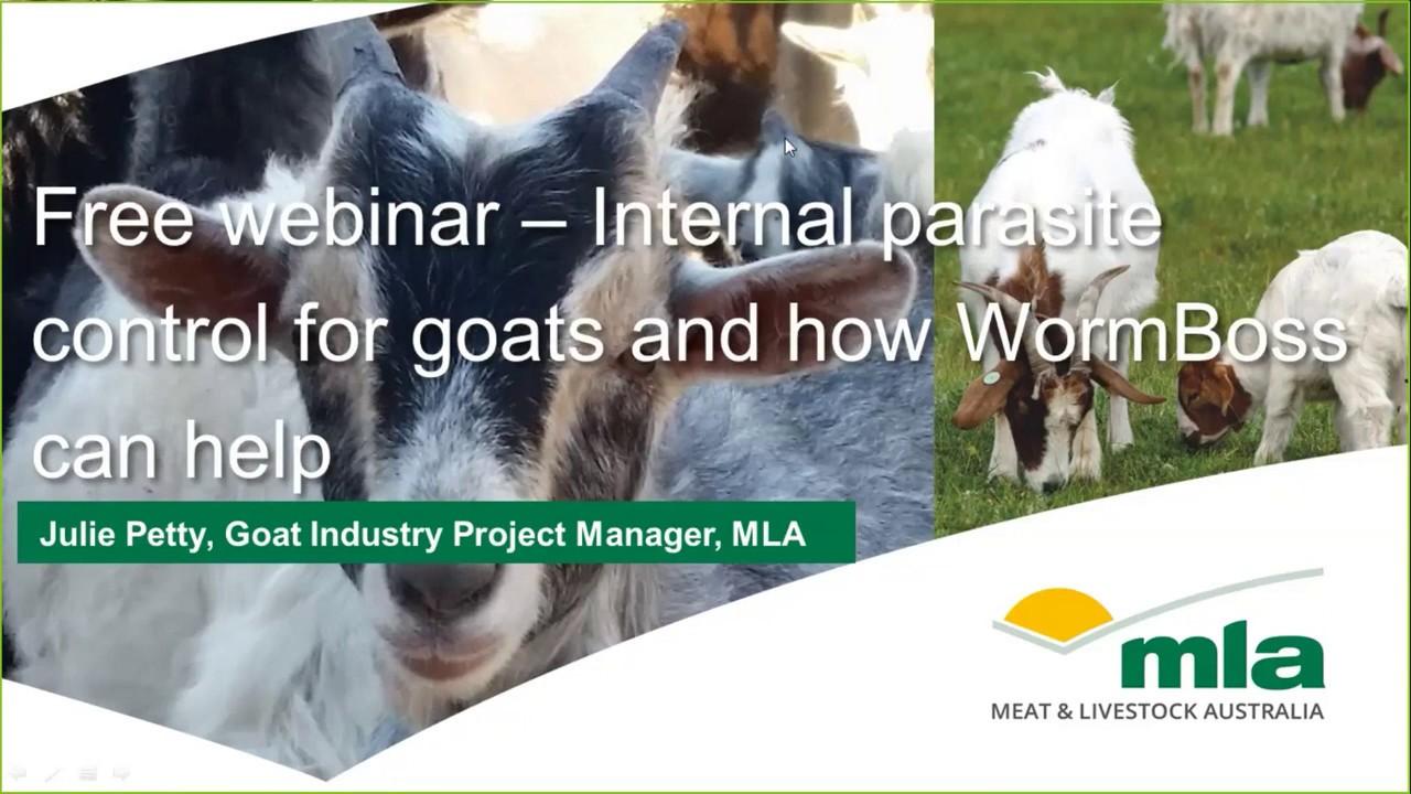 Goatmeat Webinars | Meat & Livestock Australia