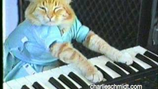 Repeat youtube video Keyboard Cat Behind The Scenes! - SHOCKING NEW FOOTAGE!