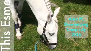 Vlog | Area Pony Club Showjumping Comp | July 2016 | This Esme
