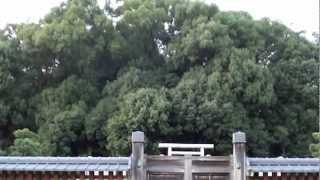 【日時】平成24年(2012)10月7日(日)17:20 〇読みは「春日率川坂上陵...