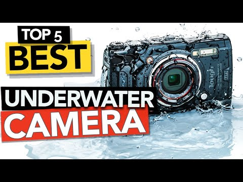 TOP 5 Best Underwater Camera