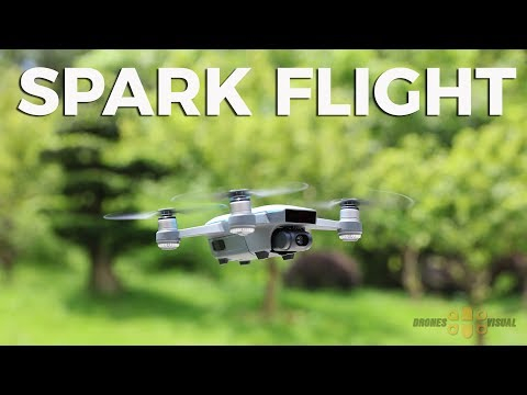 DJI Spark Flight, Gesture Control and Image Quality