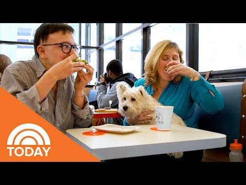 New York's First Dog-Friendly Cafe Is Finally Here!   TODAY
