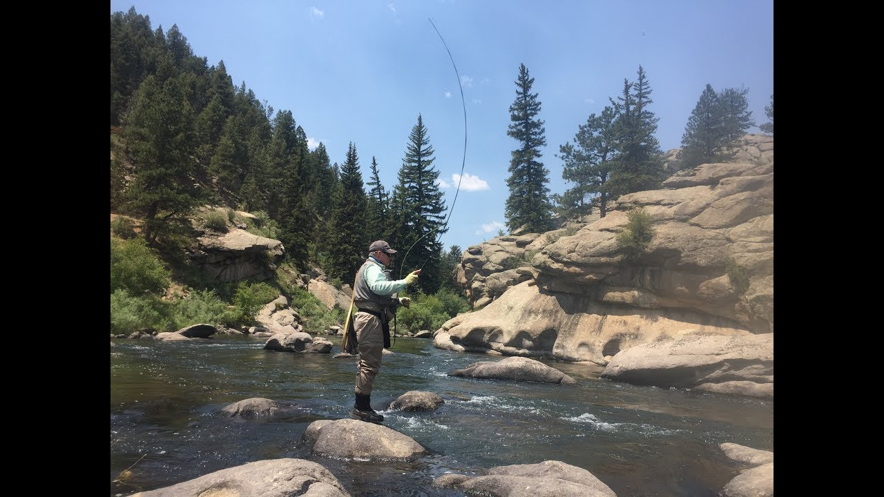 Nick Fly Fishing 11 Mile Canyon Colorado June 2017