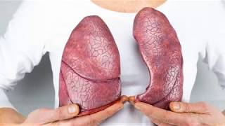 7 loại thực phẩm được ví như 'máy hút bụi' cho phổi: ăn càng nhiều càng xa rời ung thư