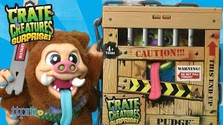 Crate Creatures Surprise! Snort Hog and Pudge from MGA Entertainment
