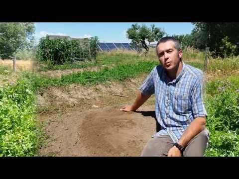 Permaculture Swales Part 1