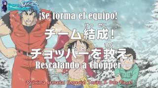 One Piece 542 sub español Avances