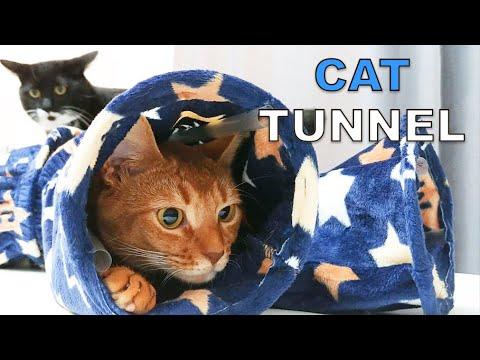 DIY Cat Tunnel