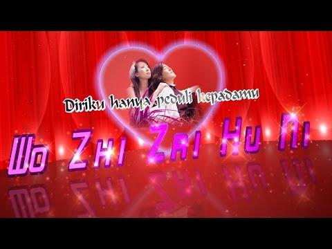 Wo Shi Zai Hu Ni Arti Lirik Bahasa Indonesia
