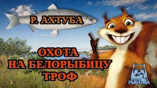 РОСІЙСЬКА РИБАЛКА 4/ Russian Fishing 4   В ПОШУКАХ БЕЛОРЫБИЦЕ .