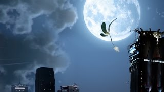 The Seed and the Moon by Umpqua Bank