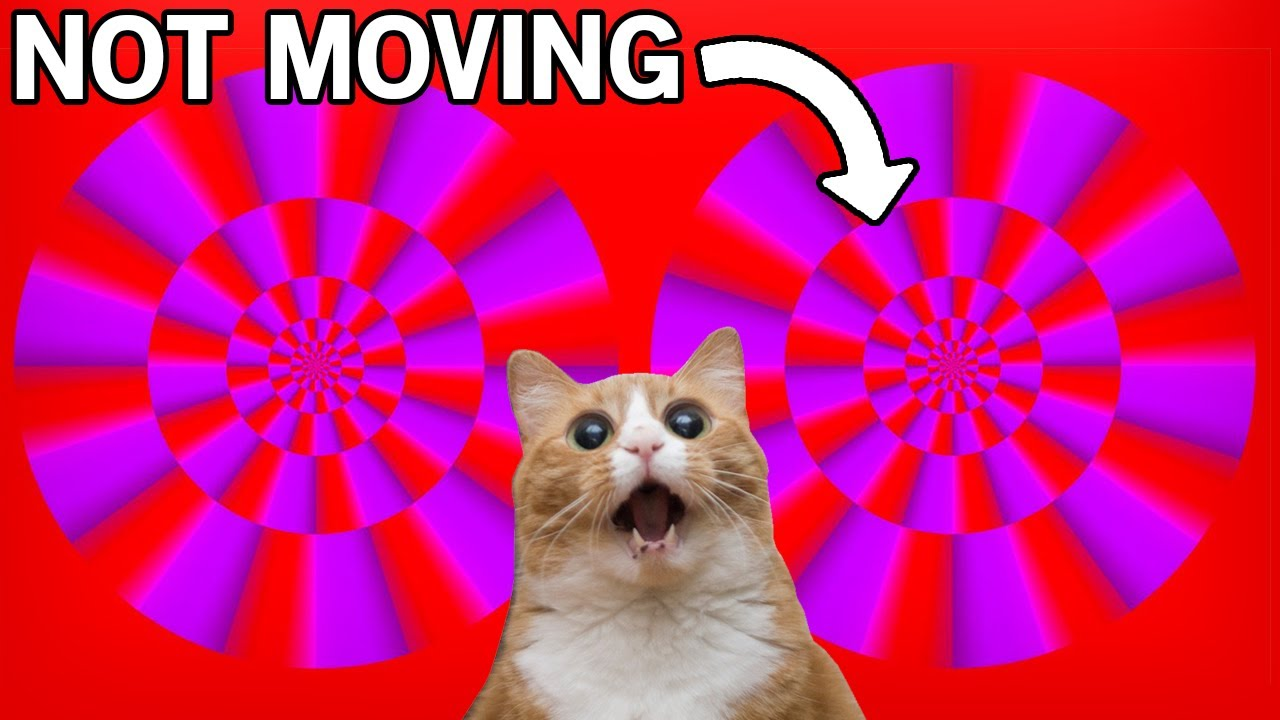 The Best Moving Illusions Youtube