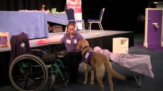 Canine Partners Demonstration @ Headway's 'the Way Ahead 2012' Conference -