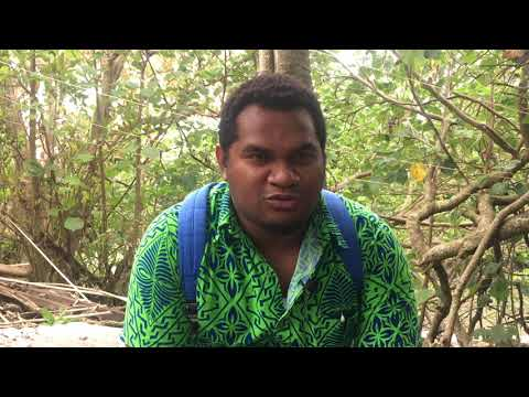 RONALD TOITO'ONA, Solomon Star Newspaper (Solomon Islands) - Media Capacity Climate Change Reporting