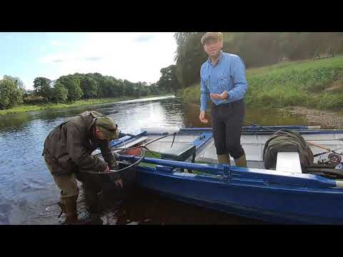 Fishing The River Tay At Meikleour And Upper Islamouth