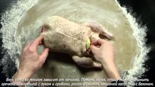 Утка, запеченная в хлебной корочке