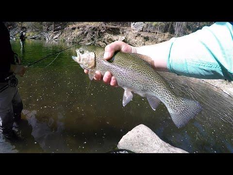 Fly Fishing The Big Thompson River Below Lake Estes
