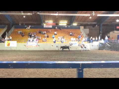 Dustin Hicks And Red, Jackson County Expo