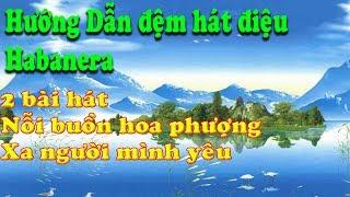Hướng dẫn đệm hát điệu Habanera-2 baì hát nỗi buồn hoa phượng-xa người mình yêu