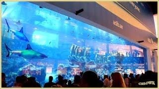 DUBAI MALL - World Mega Mall: Mega Aquarium, Waterfall, Ice Stadium..