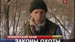 видео: Браконьеры приморского края.flv