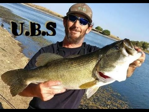 Bass Fishing 8 Pound PB Caught At Contra Loma Reservoir. #ContraLomaReservoir