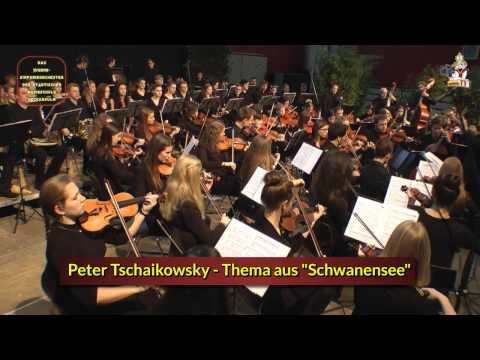 Schwanensee (Thema) * Jugend-Sinfonieorchester Neckarsulm
