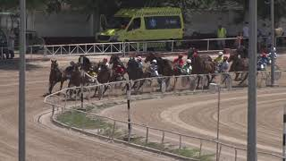 Vidéo de la course PMU PREMI SINEU