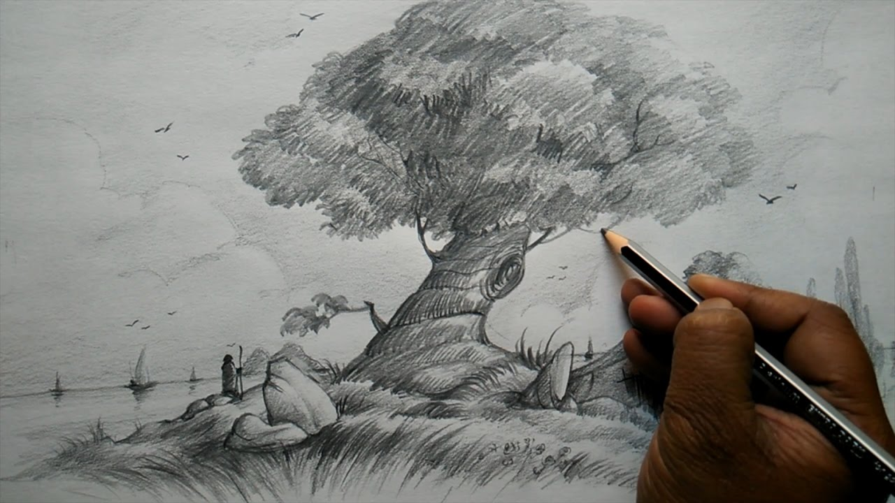 How to draw a tree and house with composition for beginners pencil art youtube