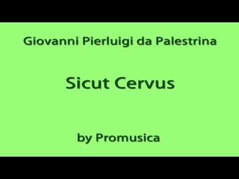 Palestrina / Sicut Cervus (Overdub)
