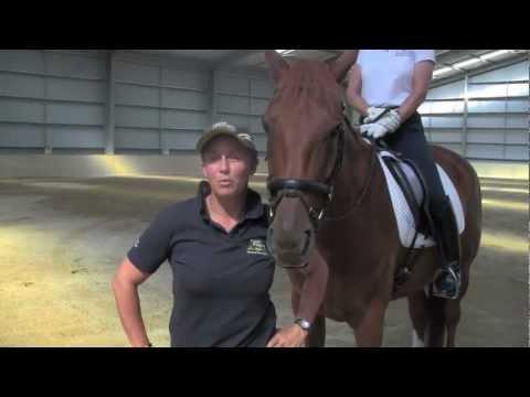 Fiber Fresh Feeds Equine TV EP 28 - Riding Aids