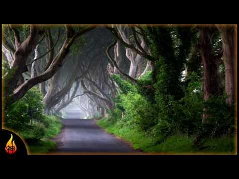 Irish Folk Music | Departing Solway | Relaxing Instrumental Irish Music