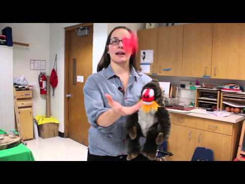 Gross Motor Group Ideas for Elementary School Children : Creative Education