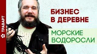 Бизнес в деревне без вложний Морские водоросли ТРАВАРТ Самодостаточность Андрей Протопопов