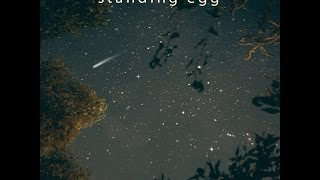 STANDING EGG - Starry Night