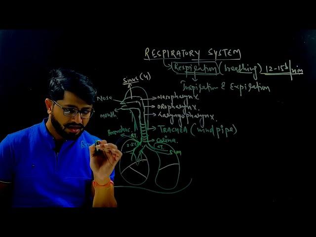 D-PHARMACY PART I   | HAP |  Respiratory System