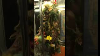 Subway creatures  man dressed as weed plant on train