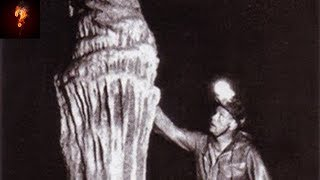 Alien Tomb Found In Tayos Caves?
