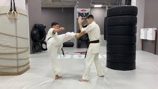 Kyokushin Karate combinations