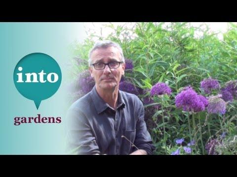 Know Your Weeds: Convolvulus (Bindweed)