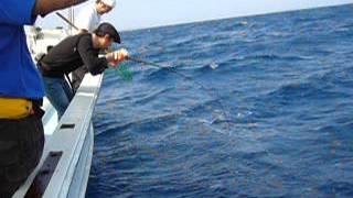 ツムブリ ヤマトナガイユー 沖縄 ジギング