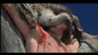 Arnold - Cruelty to Animals Part 1