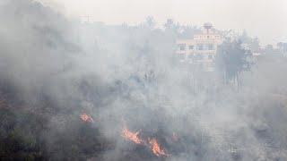 بولا يعقوبيان ليورونيوز عن حرائق لبنان: الدولة في غيبوبة والبلد عاجز…