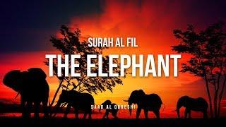 The Elephant Surah Al Fil Quran Recitation Beautiful القرآن الكريم سورة الفيل
