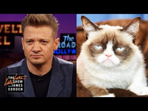 Jeremy Renner Is Grumpy Cat