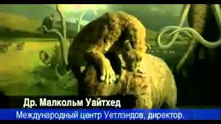 'Тайны глубин Чёрного моря' // Dark sekrets of the Black Sea