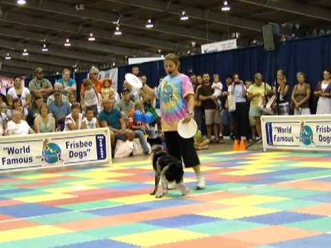 Kelly Miller and Rio Frisbee Demonstration