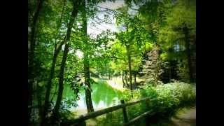 Il Lago della Ninfa.wmv